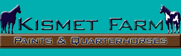 Kismet Farm Paints & Quarter Horses